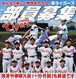 一緒に野球をやろう!!